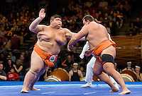 Sumo wrestling at Madison Square Garden.