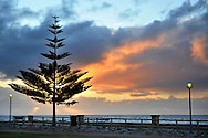 Sunset and Tree near Busselton Jetty of Western Australia