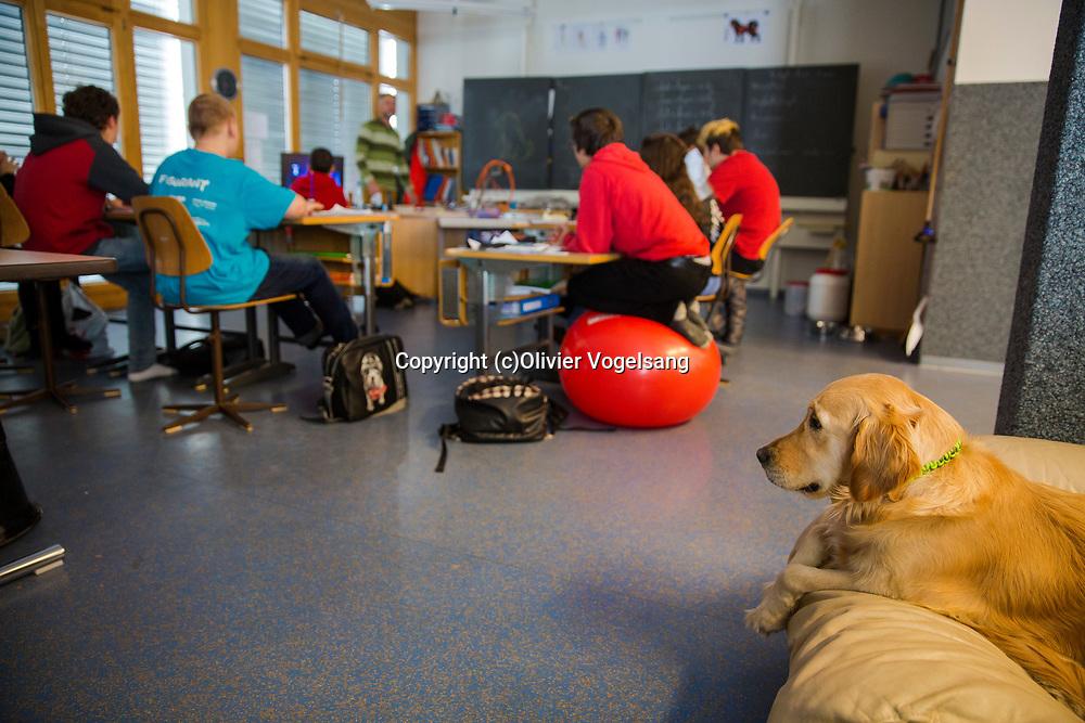 Saint-Cergue, décembre 2017. reportage dans une école spécialisée à St-Cergue, dans laquelle un chien scolaire est utilisé depuis le début de l'année pour venir en aide et calmer les élèves. C'est le premier chien à être utilisé de la sorte en Suisse romande. La classe de Stephan Läng. © Olivier Vogelsang