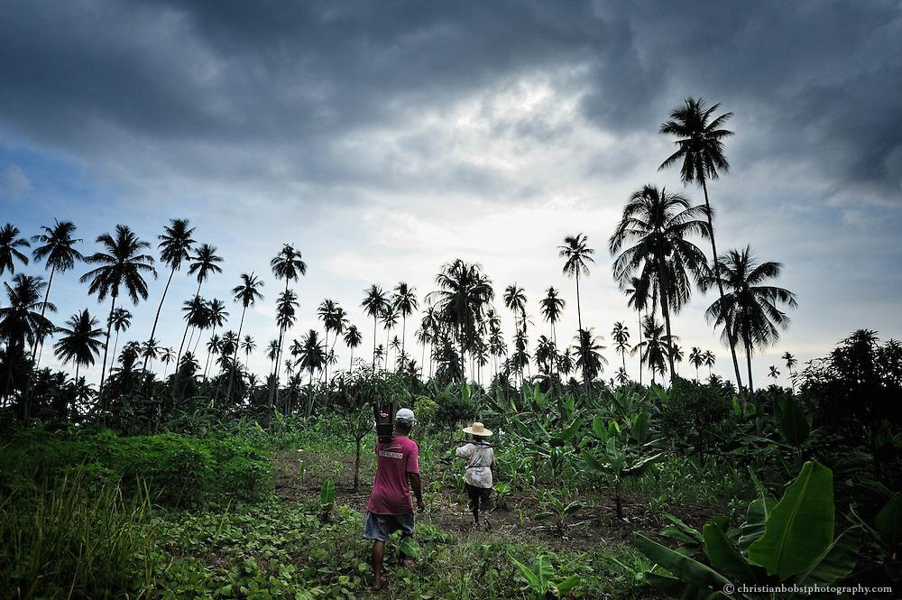 Nach getaner Arbeit auf der Plantage kehren Alma Cagat und ihr Mann Abend zu ihrem Haus zurück.