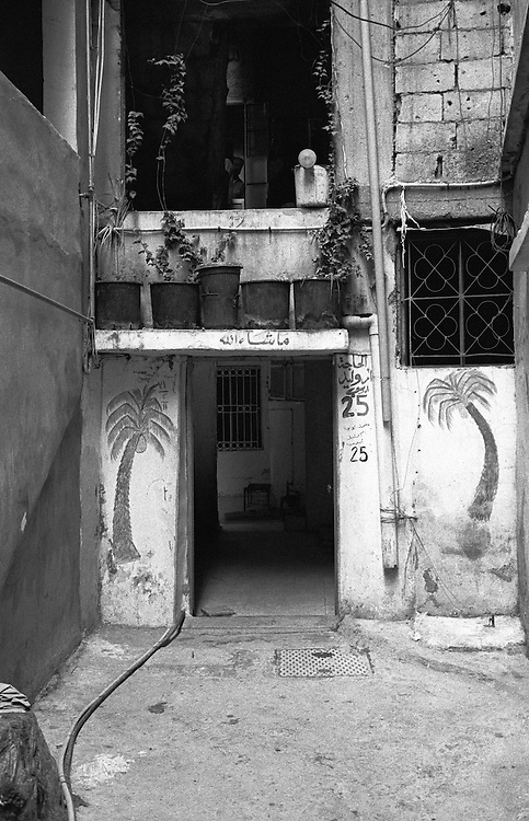 Shatila, UNRWA camp. Improvised garden and vegetal decorations at the home of &quot;Umm Walid&quot; Ayyub.<br />  <br /> Chatila, UNRWA camp. Jardin improvis&eacute; et d&eacute;corations v&eacute;g&eacute;tales au domicile de la Hajj&eacute; &quot;Oum Walid&quot; Ayoub.