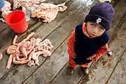 A YOUNG BOY IN THE SLAUGTERHOUSE NEXT TO THE INTESTINES OF ONE DEATH ANIMAL.