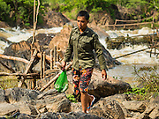 17 JUNE 2016 - DON KHONE, CHAMPASAK, LAOS:  A fisherman walks back to shore after checking his fish traps in Khon Pa Soi Waterfalls, on the east side of Don Khon. It's the smaller of the two waterfalls in Don Khon. Fishermen have constructed an elaborate system of rope bridges over the falls they use to get to the fish traps they set. Fishermen in the area are contending with lower yields and smaller fish, threatening their way of life. The Mekong River is one of the most biodiverse and productive rivers on Earth. It is a global hotspot for freshwater fishes: over 1,000 species have been recorded there, second only to the Amazon. The Mekong River is also the most productive inland fishery in the world. The total harvest of fish from the Mekong is approximately 2.5 million metric tons per year. By some estimates the harvest in the Tonle Sap (in Cambodia) had doubled from 1940 to 1995, but the number of people fishing the in the lake has quadrupled, so the harvest per person is cut in half. There is evidence of over fishing in the Mekong - populations of large fish have shrunk and fishermen are bringing in smaller and smaller fish.        PHOTO BY JACK KURTZ