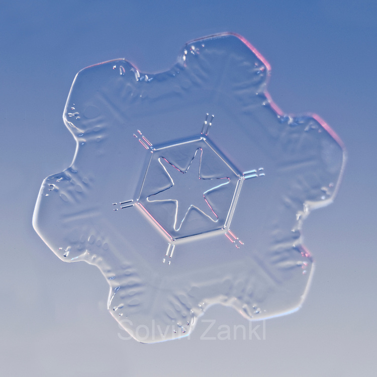 Snow Crystal, Snowflake magnified under microscope,  Lillehammer, Norway   Schneeflocke   Schneekristall   Fotografie