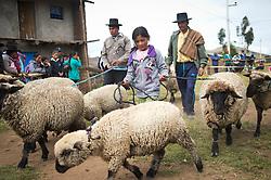 Feria agrícola en Ñuñunhuaycco.