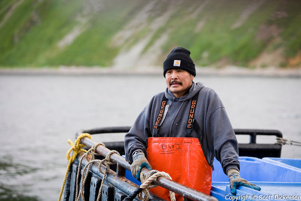 A native Alaskan man works aboard a tender vessel buying fish from commercial salmon fishing boats in the Easter Aleutian Islands area M fishing grounds.