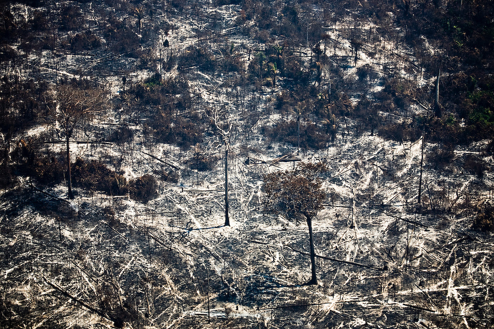 Man made forest fires East of the road BR 163 on Novo Progresso Municipality near Tau Indian land, Para, Brazil, August 10, 2008..Daniel Beltra/Greenpeace