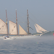 Tall ship Gazela passes buoy 2KR off New Castle, NH on its way into the harbor at Portsmouht, NH