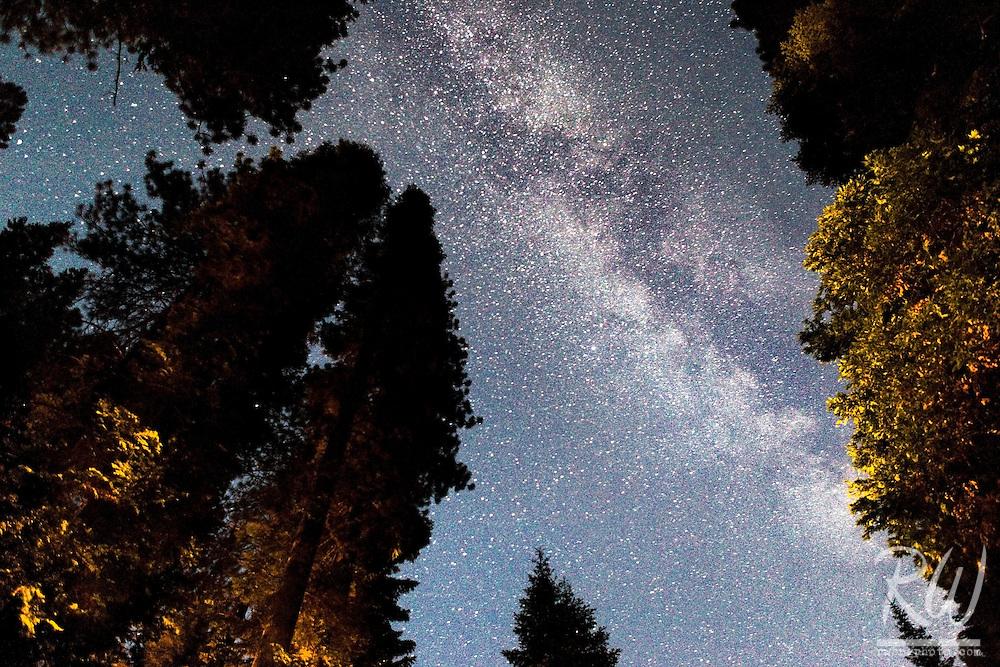 Milky Way Galaxy, Calaveras Big Trees State Park, California