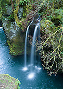 Pretty waterfall along the North Umpqua River, on the half-mile trail to Toketee Falls, Oregon, USA.