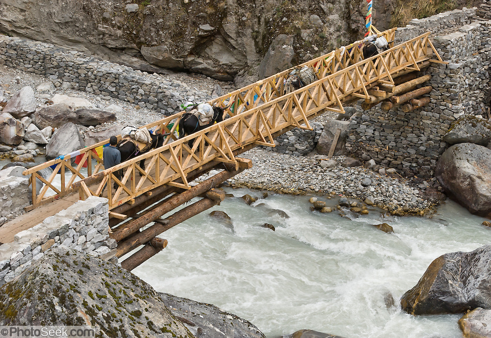 "A new wooden bridge spans the Dudh Khoshi (or Kosi; ""Milky River""; or Imja Khola), near Tengboche Monastery, in the Khumbu District, Sagarmatha National Park,  Nepal. Sagarmatha National Park (created 1976) was honored as a UNESCO World Heritage Site in 1979."