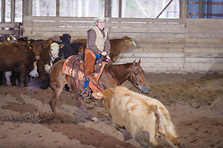 April 30 2017 - Minshall Farm Cutting 2, held at Minshall Farms, Hillsburgh Ontario. The event was put on by the Ontario Cutting Horse Association. Riding in the 1,000 Amateur Class is Alan Garmis on Qb Tilly Highbrow Cd owned by the rider.