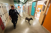 Office Stephanie Clinton works with Sasha to check classrooms with Sergeant Alfonso Barbosa at Sugar Grove Academy, May 15, 2014.