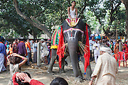 A crowd is observing an elegantly decorated elephant on sale during the yearly Sonepur Mela, Asia's largest cattle market, in Bihar, India.