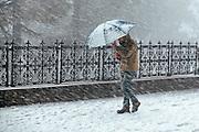 A man struggling with his umbrella during a snowstorm in Shimla, Himachal Pradesh, India
