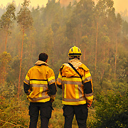 Photo: Francisco Arias / SIPA PRESS<br /> <br />  Chili Dichato31Janvier 2017<br /> <br /> Pompiers fran&ccedil;ais lutte contre les incendies dans le sud du Chili.<br /> De grands incendies ont consomm&eacute; des milliers d'hectares.  Ceci est la pire catastrophe dans l'histoire du Chili.<br /> Des milliers de maisons ont &eacute;t&eacute; br&ucirc;l&eacute;es  et des milliers de personnes laiss&eacute;es sans abri.<br /> <br /> D&eacute;tachemenet GFFF fran&ccedil;ais<br /> 70 personnes Total<br /> 41 personnes de l&acute;Unit&eacute; d&acute;Instruction et &acute;Intervention de la s&eacute;curit&eacute; Civile N&ordf;7 de Brignoles  (UIISC7)<br /> 28 persones de l&acute;Unit&eacute; d&acute;Instruction et Intervention de la s&eacute;curit&eacute; Civile N&ordm;5 ( UIISC5)<br /> 1 Sapeur pompier , sp&eacute;cialiste de s&eacute;curit&eacute; invite pour la coop&eacute;ration dans les Andes ( P&eacute;ru, Bolivie, Chili, Argentine, Equateur, Colombie)