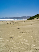View of the beach at Mason Bay, Stewart Island (Rakiura), New Zealand