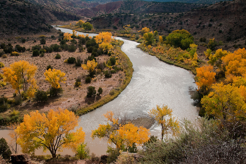 The Chama River in Abiquiu, NM bordered by cottonwoods in their fall colors
