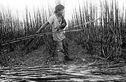 Trabalho análogo ao de escravo de índio guaraní kaiowá da aldeia de dourados, trabalhando na usina Naviraí de Cana de Açúcar em Naviraí, Mato grosso do Sul, MS..I work similar to the of slave of Indian guaraní kaiowá of the village of gildings, working at the plant Naviraí of Cane of Sugar in Naviraí, Mato Grosso do Sul, MS.