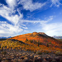 Mono County fall color is surprisingly good. Out there you can find a mountain bathed in oranges and yellows.