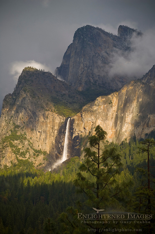 Sunlight and storm clouds over Bridalveil Fall waterfall and forest, Yosemite Valley, Yosemite National Park, California