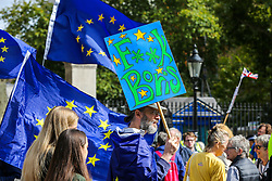 """© Licensed to London News Pictures. 07/09/2019. London, UK. An anti-Brexit protester with a placard takes part in """"Defend our Democracy and Stop Brexit"""" demonstration in Whitehall, Westminster. The protesters are demonstrating against the British Prime Minister Boris Johnson's intention to prorogue Parliament until 14 October. Photo credit: Dinendra Haria/LNP"""