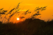 Sunset over the dunes of Isle of Palms, a sea island off the coast of South Carolina and now a popular vacation spot.