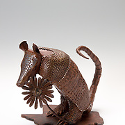 Title: Armadillo<br /> Artist: Sarah Stork <br /> Date: 2016<br /> Medium: Steel<br /> Dimensions: <br /> Instructor: TJ Hilton<br /> Awards: Second Place in Sculpture -  40th Annual Student Art Exhibition, 2016 President's Award<br /> Status: On Display<br /> Location: ACC President's Office Suite, HBC 501
