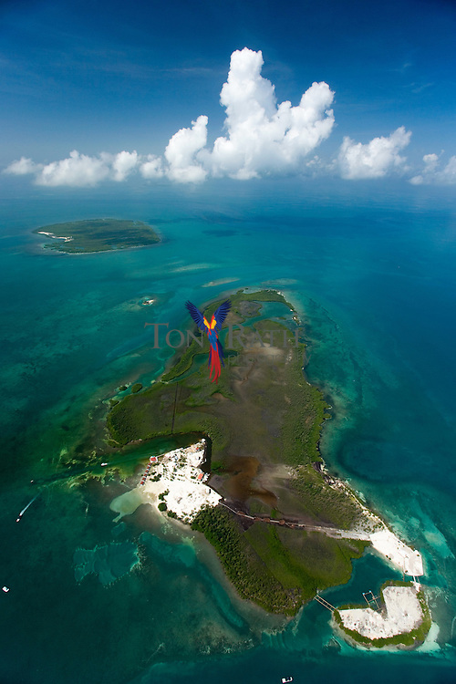 Aerial view of Spanish Lookout Caye,Belize