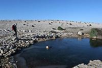 steinete landskap på øya Krk, stony landscape on the island, Krk