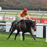 Lingfield 25th November