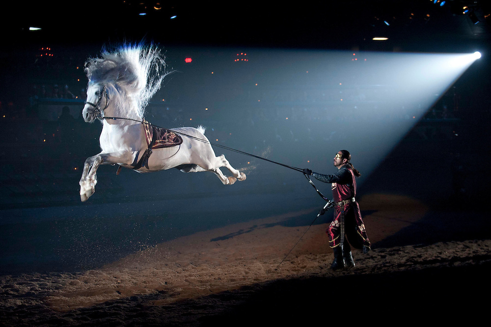 The new show at Medieval TImes in Buena Park.  Photographs by Matt Petit for Davis Barber Producitons, Inc.