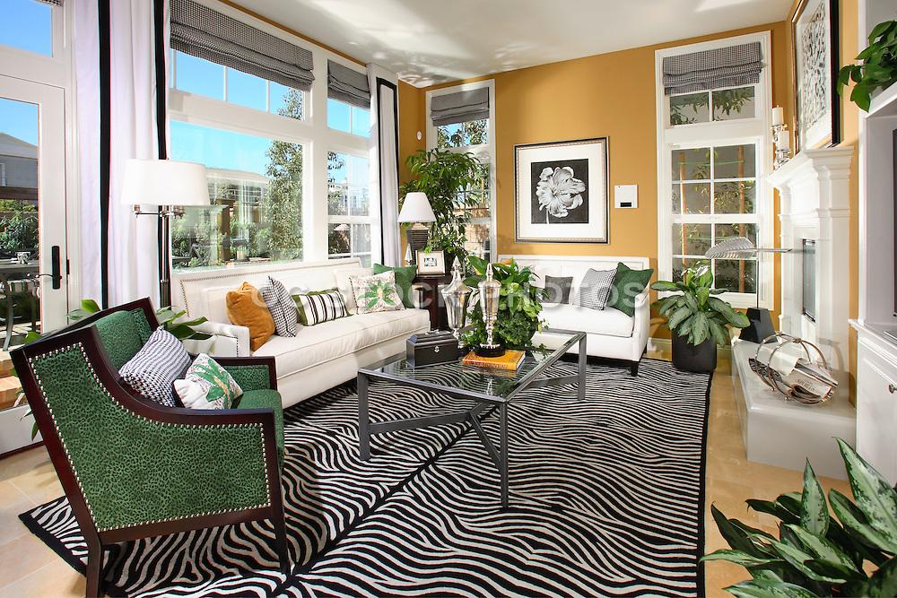 Model Home Living Room Interior Design