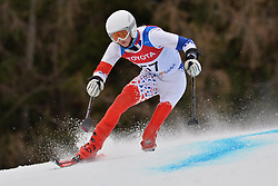 ORVARSSON Hilmar LW2 ISL at 2018 World Para Alpine Skiing Cup, Kranjska Gora, Slovenia