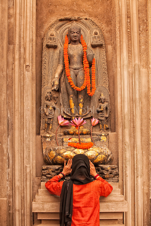A woman prays at the feet of a Buddha statue at the site of the Buddha's enlightenment, the Mahabodhi Temple in Bodhgaya India