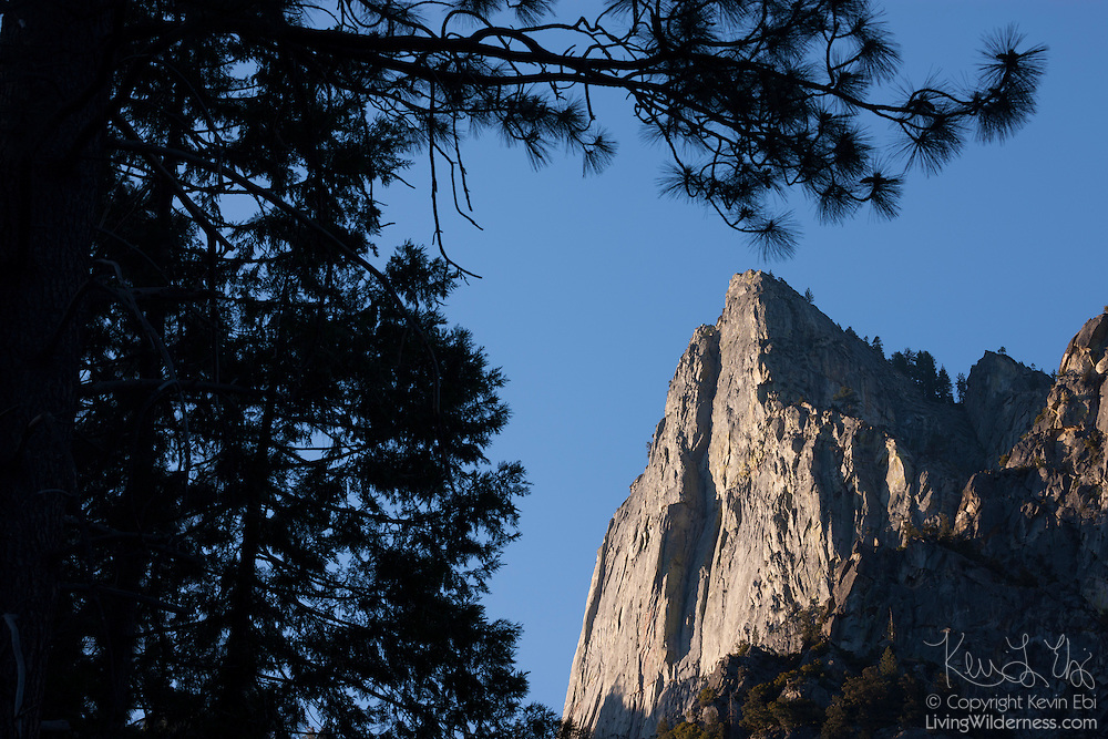 Trees frame the view of the summit of Grand Sentinel, a 8518 foot (2596 meter) peak in Kings Canyon National Park, California.