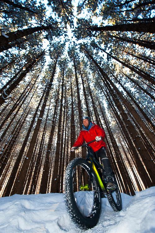 Fat Tire biking in snowy woods of Duluth, Minnesota.