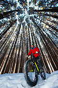 Fat Tire biking in snowy woods of Duluth, Minnesota.