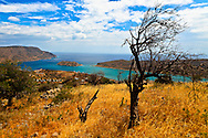 Spinalonga has had a long past, once a leper colony created by the Greek State. Perhaps now the dark, unwanted island will free itself from it's dead branches.