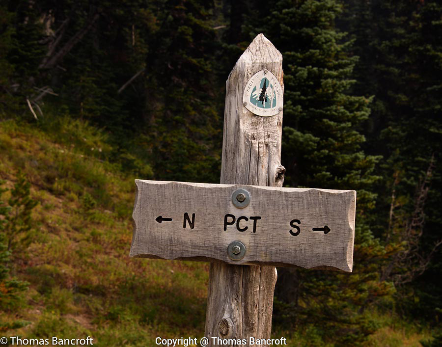 The junction of the Pacific Crest Trail and Killen Creek Trail.