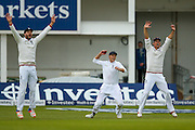 Slips go up as England & Lancashire bowler James Jimmy Anderson gets the wicket of Sri Lanka Captain Angelo Mathews LBW  during day 2 of the first Investec Test Series 2016 match between England and Sri Lanka at Headingley Stadium, Headingley, United Kingdom on 20 May 2016. Photo by Simon Davies.