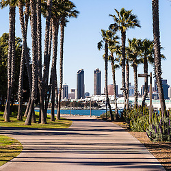 Picture of San Diego skyline through Coronado Island's Bayshore Bikeway (Silver Strand Bikeway) in Southern California. Photo was taken in 2012 and is high resolution.