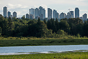 Metro Town and Burnaby Lake
