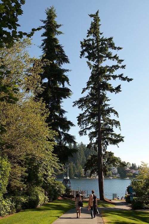 North America, United States, Washington, Bellevue, Meydenbauer Beach Park