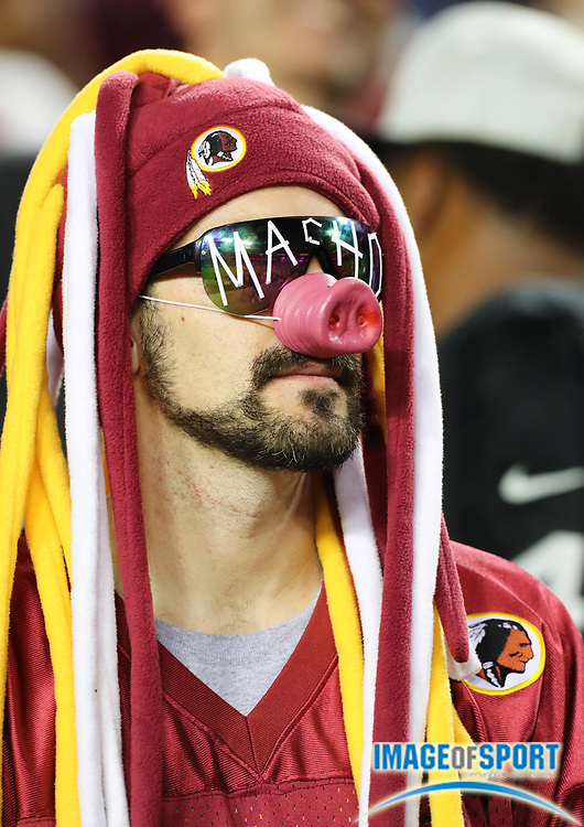Sep 24, 2017; Landover, MD, USA; Washington Redskins fan reacts during an NFL football game against the Oakland Raiders at FedEx Field. The Redskins defeated the Raiders 27-10.