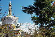 Stupa and Snow Capped Mountain in McLeod Ganj, Dharamsala of India