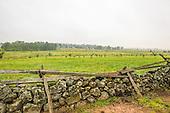 Pennsylvania | Gettysburg