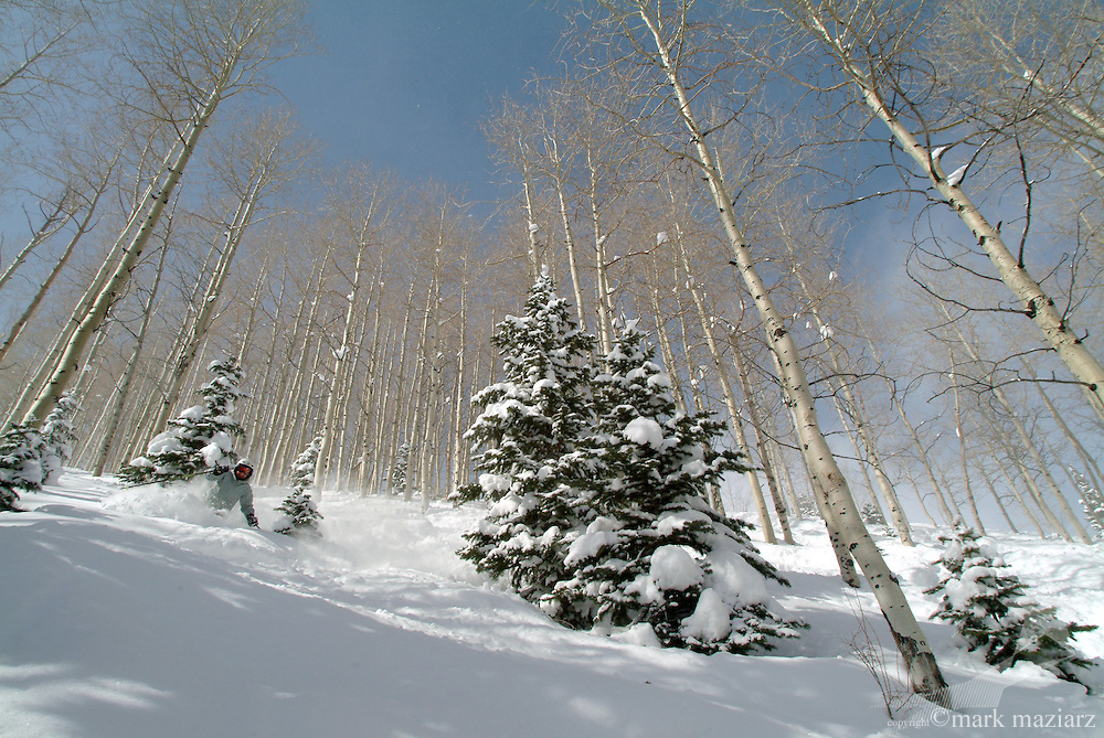 Mir tele skiing powder at The Canyons, Park City, UT USA