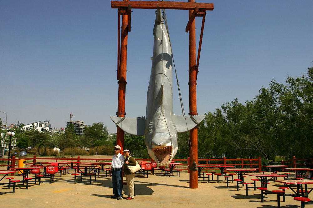 Chinese pose for a pictue next to the likeness of a giant shark as they enjoy their May day holidays at the zoo in Beijing, China Thursday May 3, 2007.