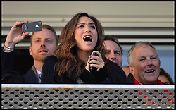 Myleene Klass cheers on the winning horse in the Hennessy Gold Cup at Newbury racecourse in Berkshire, United Kingdom,  Saturday, 30th November 2013. Picture by Andrew Parsons / i-Images